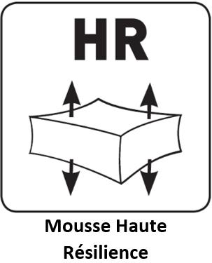 Mousse Haute Résilience - Sedac.png
